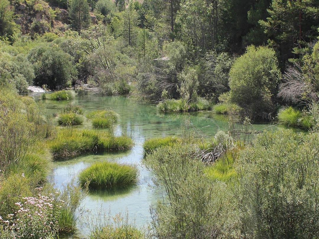 entorno_paisaje y rio (6)